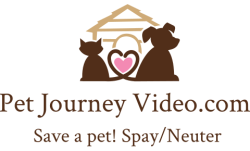 Pet Journey Nationwide Network Help for Pets